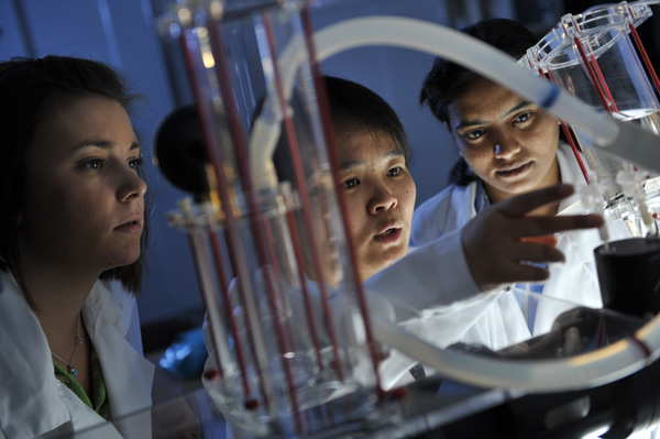 Non thesis masters biomedical engineering